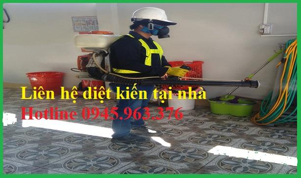 dich-vu-diet-kien-tai-nha