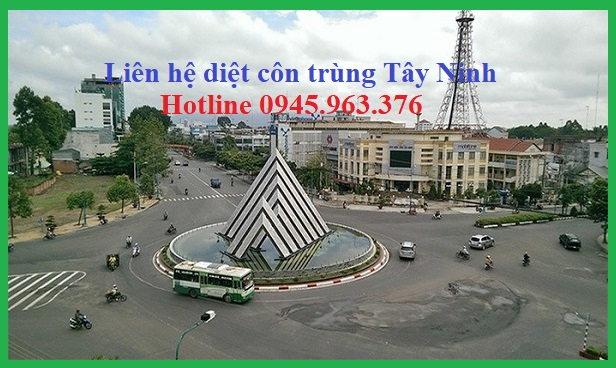 cong-ty-diet-con-trung-tay-ninh