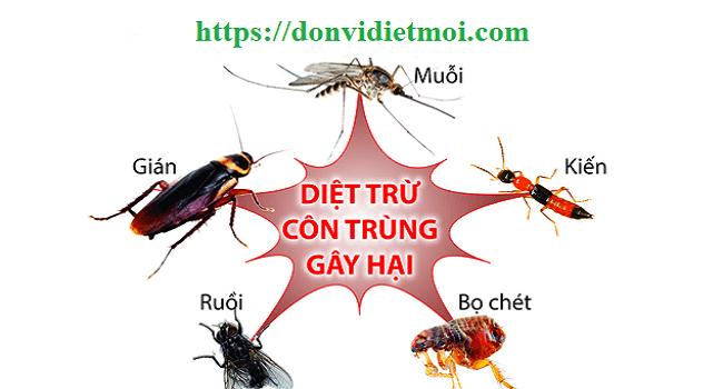 diet-con-trung-ruoi-muoi-kien-gian