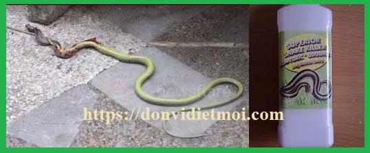 thuoc-duoi-ran-entra-snake-powder