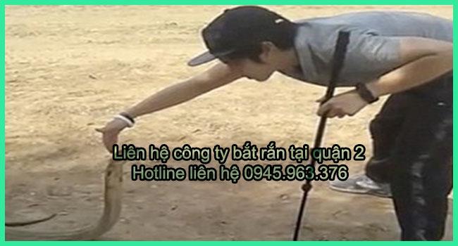 cong-ty-bat-ran-tai-nha-quan-2