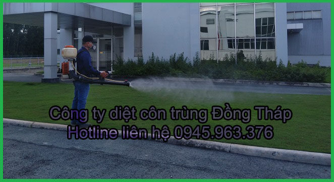 cong-ty-diet-con-trung-tinh-dong-thap