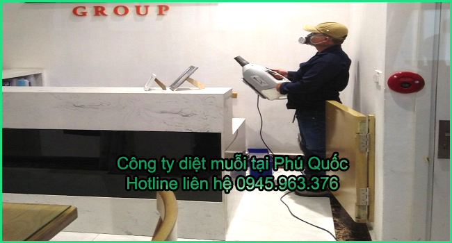 cong-ty-diet-muoi-huyen-phu-quoc