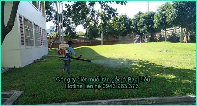 cong-ty-diet-muoi-tinh-bac-lieu