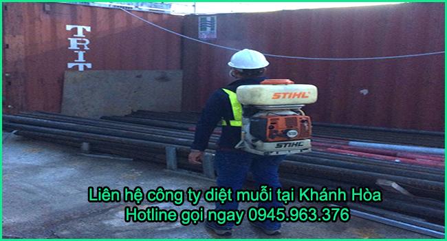 cong-ty-diet-muoi-tinh-khanh-hoa