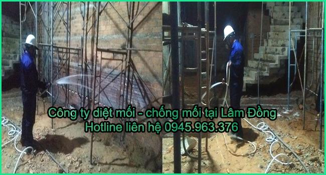 diet-moi-tai-lam-dong