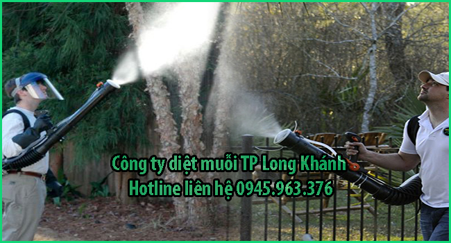 cong-ty-diet-muoi-tai-long-khanh