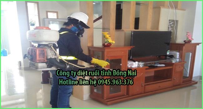 cong-ty-diet-ruoi-tinh-dong-nai