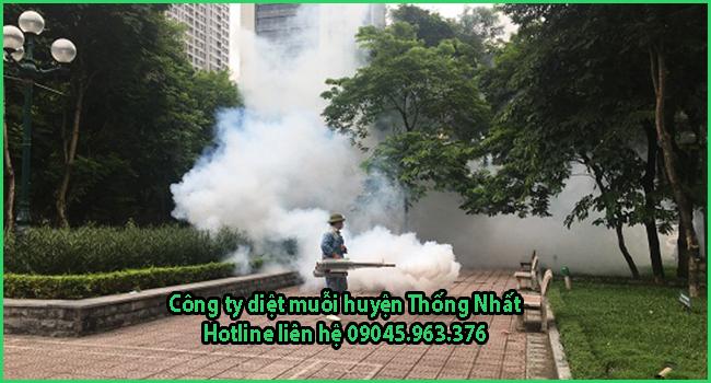 cong-ty-diet-muoi-tai-huyen-thong-nhat