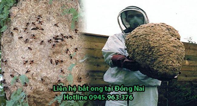dich-vu-bat-to-ong-tai-nha-tinh-dong-nai