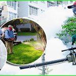 Công ty diệt côn trùng tại Quy Nhơn – Sử dụng thuốc của Bộ Y tế